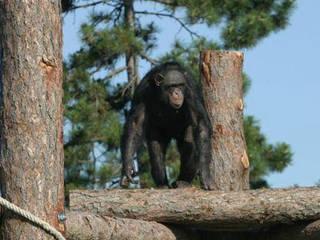 Zoo Veszprem © Zoo Veszprem